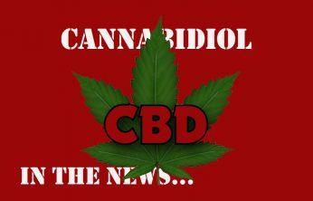 Marijuana wins CBD Oil In The News - Spinfuel VAPE Magazine