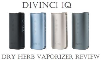 DaVinci IQ Dry Herb Vaporizers Review - Spinfuel VAPE Magazine