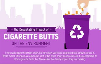Title Cigarette Butts & the Environment | Spinfuel