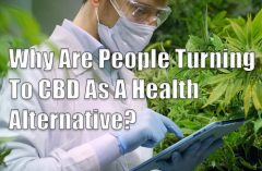 Why Are People Turning To CBD As A Health Alternative?
