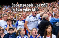 Why Sportspeople use CBD in Everyday Life CBD products are becoming more popular as people discover the benefits of this 'miracle oil' as Mike Tyson calls it. Indeed, the famous - or infamous - boxer even owns his own cannabis/CBD company now and advocates the many uses that come from his products as do many other athletes. According to a Gallup survey, 1 out of every 7 American adults uses CBD but what may be more surprising is to learn that active athletes and sports professionals use related products in their own daily lives. Not only have some sportspeople such as Tyson become involved in the business but they are advocating its use. Why would a professional sportsperson or athlete use CBD, and what are the benefits? Perhaps just as importantly, could using CBD help you too? What are the reasons for using CBD oil? For many, CBD offers a range of benefits involving physical and mental health wellness. For an athlete, CBD may help with recovery time as some surveys have shown that it contains anti-inflammatory properties which can help reduce muscle inflammation. Other sportspeople swear that CBD helps with pain relief. It may be no big surprise then that out of the many famous athletes who advocate using CBD, many are from high-impact sports where injury, pain, and recovery times are major factors. GridIron and rugby football players along with MMA fighters have all expressed their belief that CBD has helped them manage pain without addictive drugs and reduced their recovery times. CBD can also help with relaxation. Exercise is known for reducing stress levels, reading, playing video or online casino games can all be fun but sometimes you may need something else to reduce tension. CBD products for stress and anxiety Sportspeople suffer from stress, anxiety, and depression just like the average person in the street can. Michael Phelps and Serena Williams are just two high-profile athletes who have publicly spoken about their problems with depression. There are man
