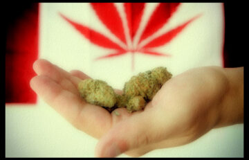 Canada And Weed
